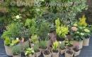 Kolekcja Pojemników ekologicznych - ARBO®-EKO